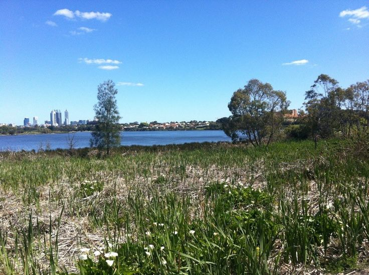Swan River, Maylands, Perth, Western Australia. This area is where I would love to live.