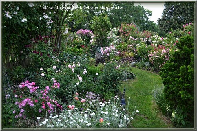 Pétales et pattes de velours - joli jardin - style jardin ...