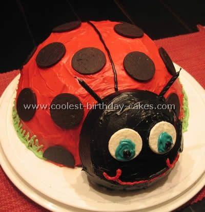 Homemade Ladybug Birthday Cake