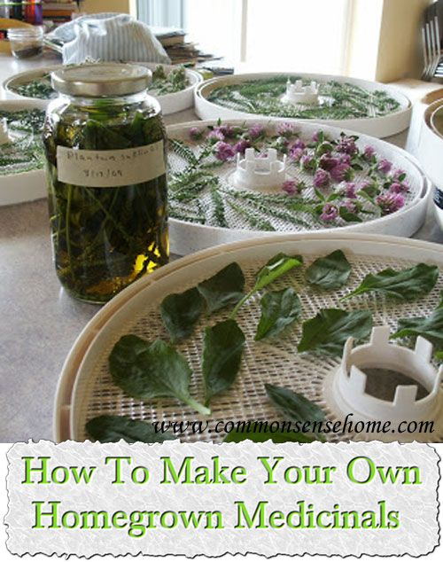 How To Make Your Own Homegrown Medicinals.   love the idea!!!!