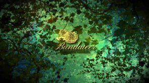 Bundeelar Rainforest #playbackstudios #corporatevideos