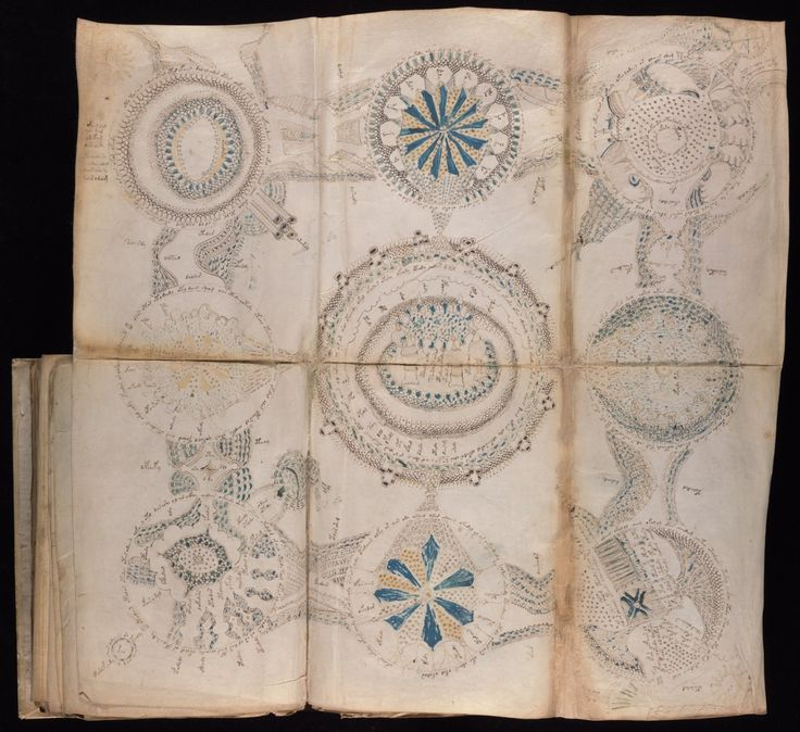 The mysterious 500-year-old book has stumped luminaries such as legendary…