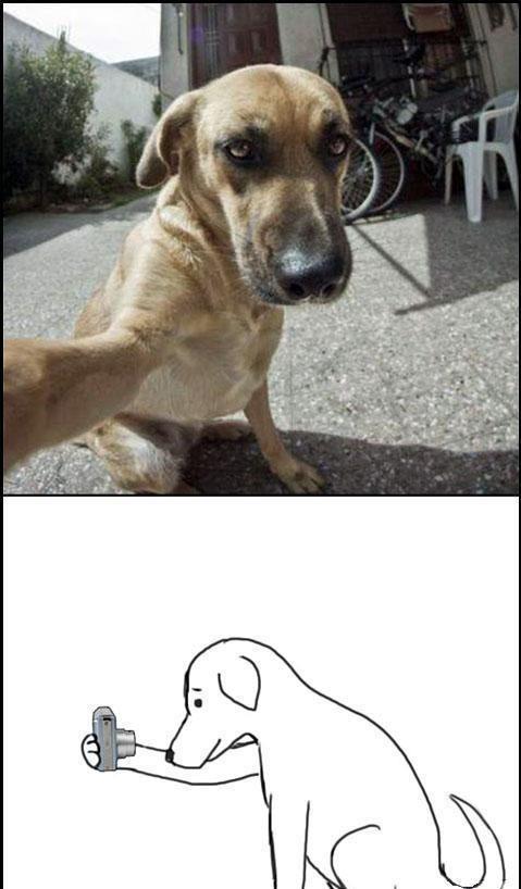 #humor en español. #Lol