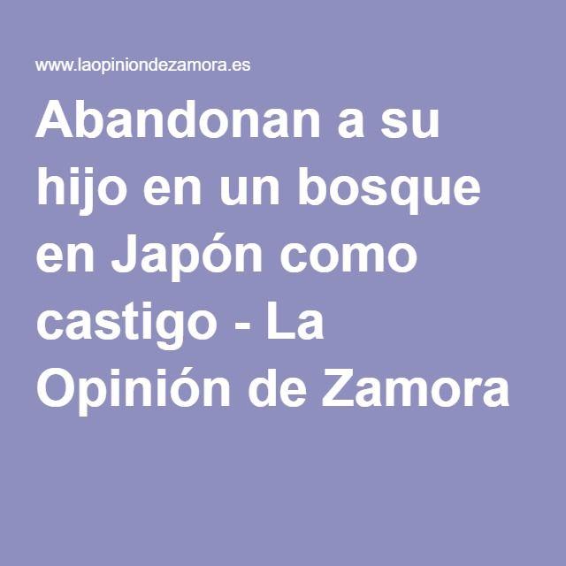 Abandonan a su hijo en un bosque en Japón como castigo - La Opinión de Zamora