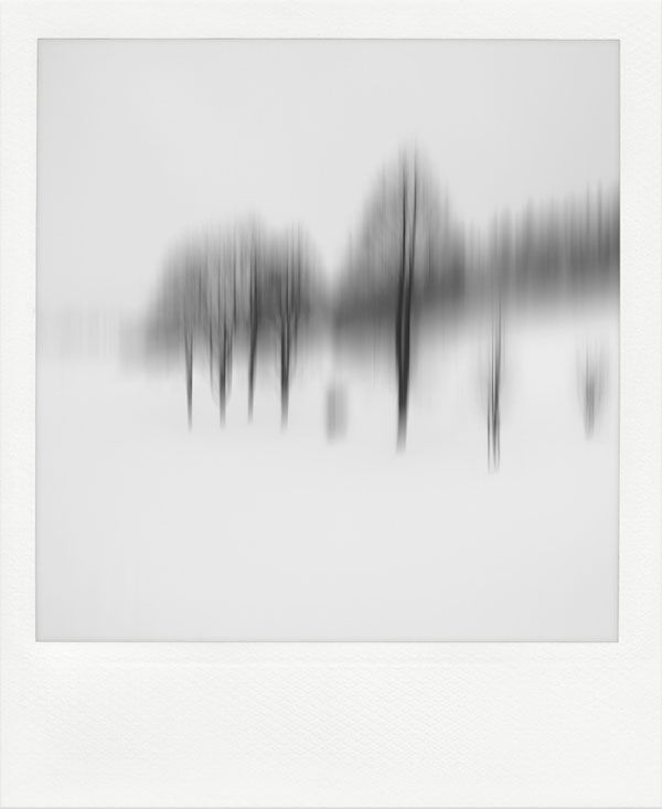 Trees - Motion Blur Landscape Photography by Jürgen Heckel