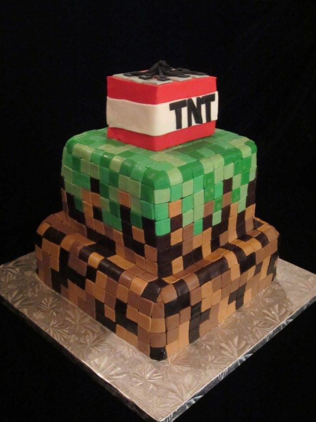 25 Elegant Image Of Birthday Cake For 11 Year Old Boy A I Made An Olds Minecraft Themed Www