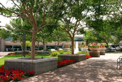 Phoenix Commercial Landscaping | HOA | Installation | Maintenance