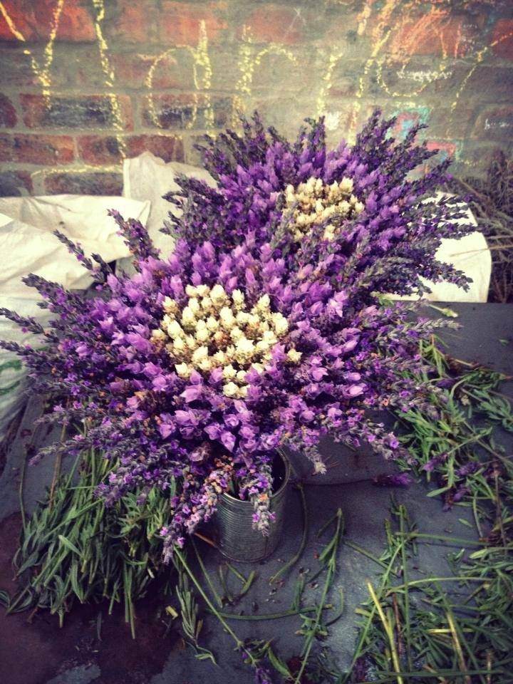 Freshly picked lavender bouquets - ah, this makes me think of a provincial wedding. :)