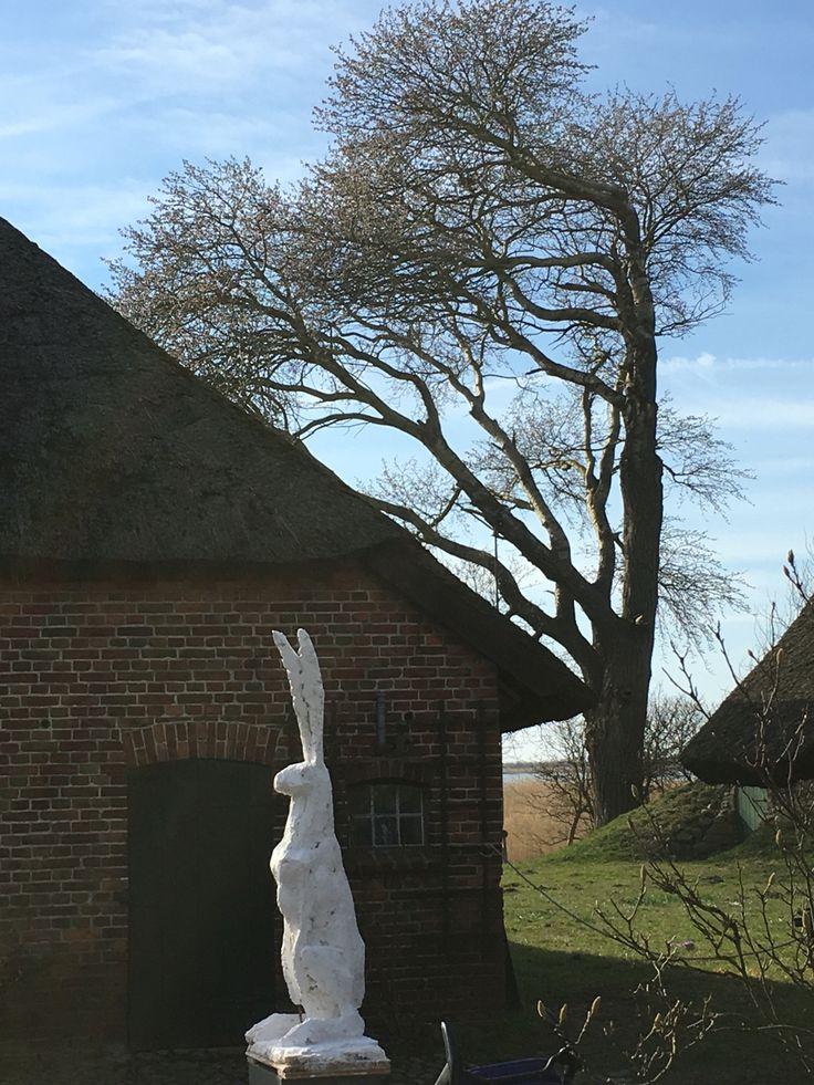 Frohe Ostern von der Barnstorfer Scheune