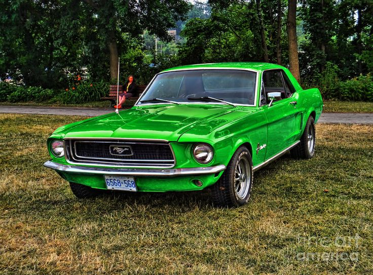 google image result for httpimagesfineartamericacomimages medium large1967 mustang green larry simanzikjpg mustangs pinterest results