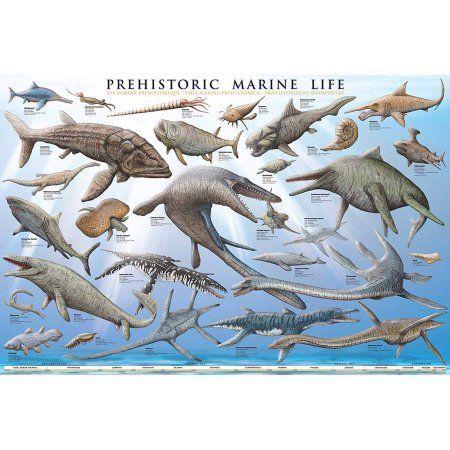 Prehistoric Marine Life Educational Chart, Multicolor