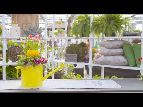 Watch as Tamara walks us through making a stunning DIY watering can planter in this weeks #TerraHowTo