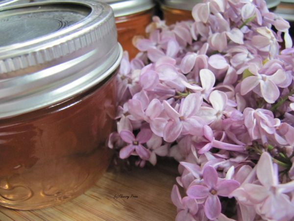 Lilac Flower Jelly