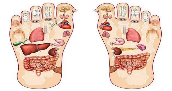 L'une des techniques nous permettant de nous imprégner des bienfaits du don de guérison est l'auto massage. Les médecins ont souligné l'importance du massage et de l'auto massage. Effets positifs multiples A l'aide du massage, la circulation sanguine est améliorée, les sécrétions sont évacuées des glandes sébacées et des glandes sudoripares, les tissus adipeux sous-cutanés …