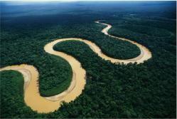 Selva Amazonica..
