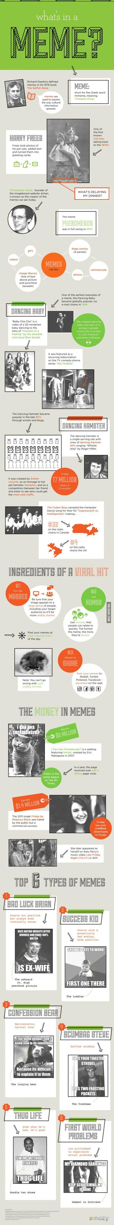 [infographic] Het succesverhaal van Meme's - 42bis »