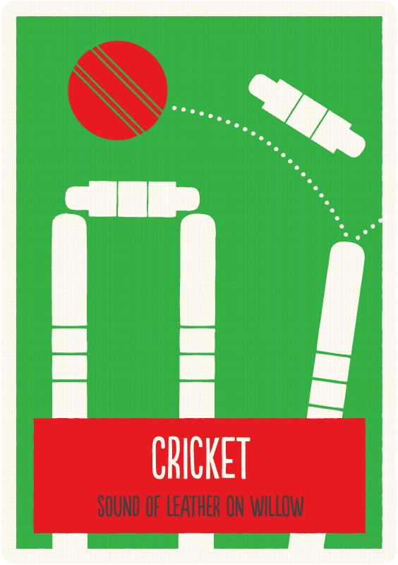 how to find a cricket