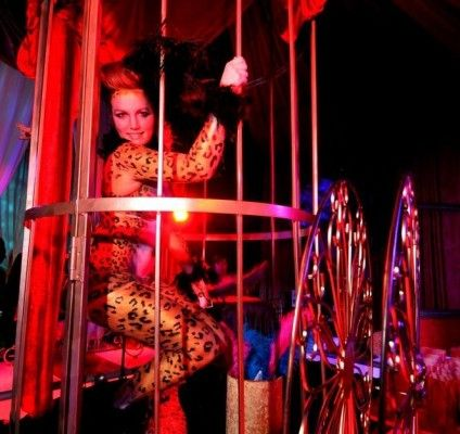 Have a #lion in a #cage as a point of interest at your next #event! #circus #actor #celebration #bigtop #brightideas #events #bodypaint #airbrush #actors as #decor