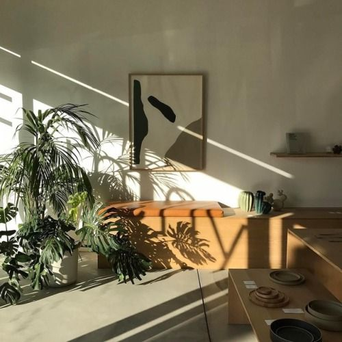 wooden benches, plants, minimal modern art, simple shelf