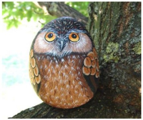 How to paint an Owl on rock, Rock painting pdf tutorial