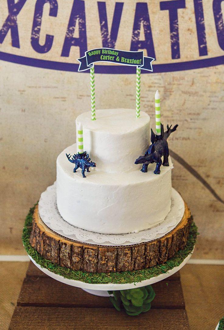 Rustic Modern Dinosaur Excavation Birthday Party Party