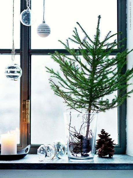 Naturtrenden og de store blomster indendørs kan nemt tvists og passe til julen, ved at tage en stor grangren indenfor, eller måske et lille træ i en krukke, potte eller papirspose.  Men som jeg viser her, syntes jeg også det er ret fedt, når man kan se rødderne - det giver looket et lidt rå....