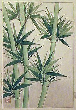 Bamboo Shoots  by Kawarazaki Shodo  (published by Unsodo)