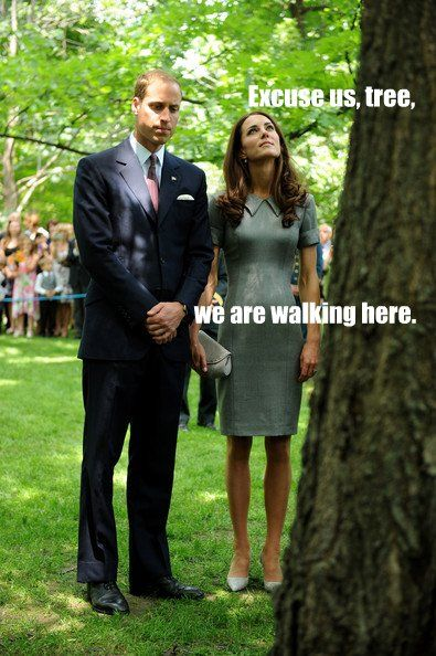 Oh the British....Duchess Of Cambridge, The Duchess, Princesses Diana, Prince Williams, Funny Pictures, Kate Middleton, Hall Trees, Catherine Duchess, Diana Princess