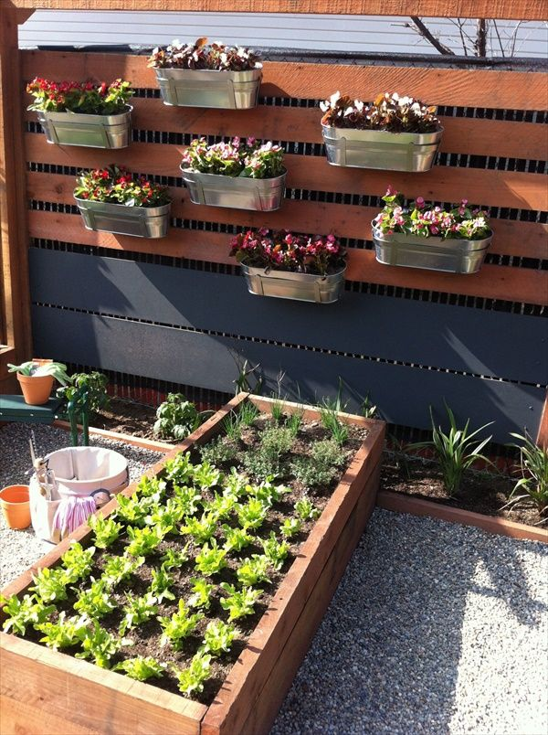 forgot to discuss...is there an opportunity for an herb garden?  and a planter space to plant w/ my son?