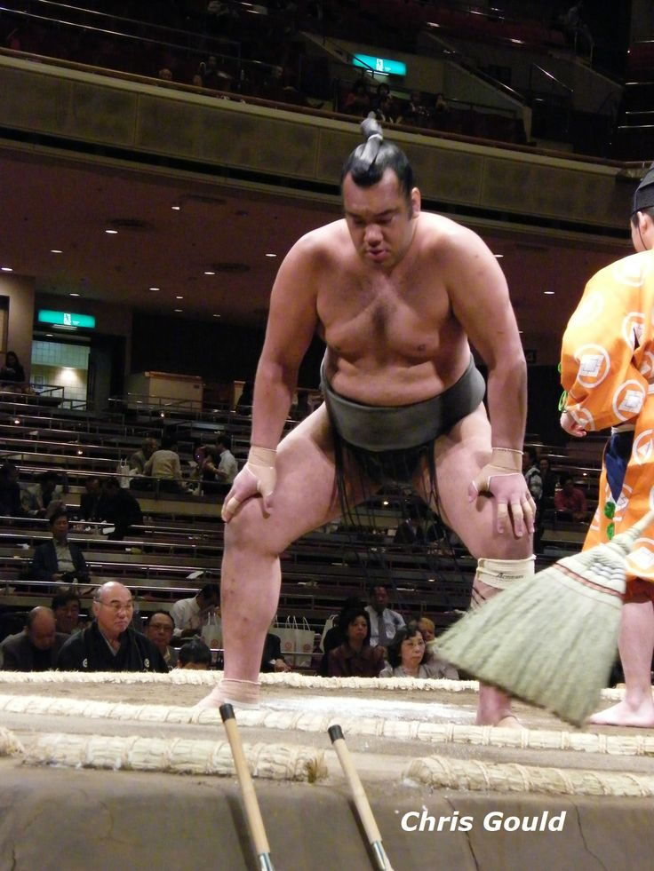 Tongan wrestler Minaminoshima, just three months before his retirement in August 2008. He was related to the King of Tonga.