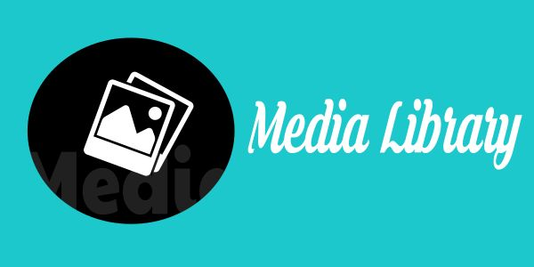 Mastering the WordPress Media Library