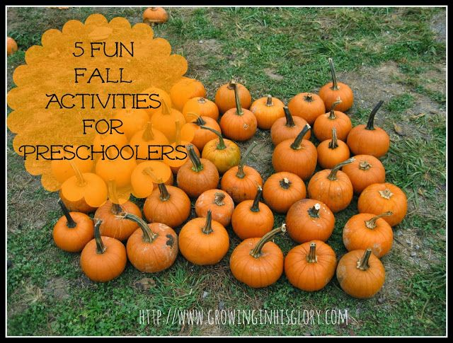 5 Fun Fall Activities for Preschoolers - Growing in His Glory