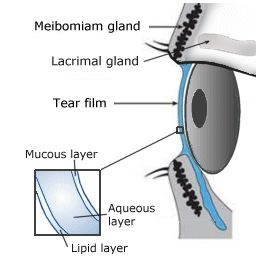 Dry Eyes Treatment for Sore, Itchy, Dry Eyes