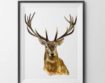 Nature Watercolor Mule Deer On a Walk by DustyShamrockStudio