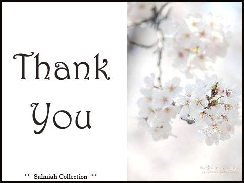 Salmiah Collection: Thank You Card 15