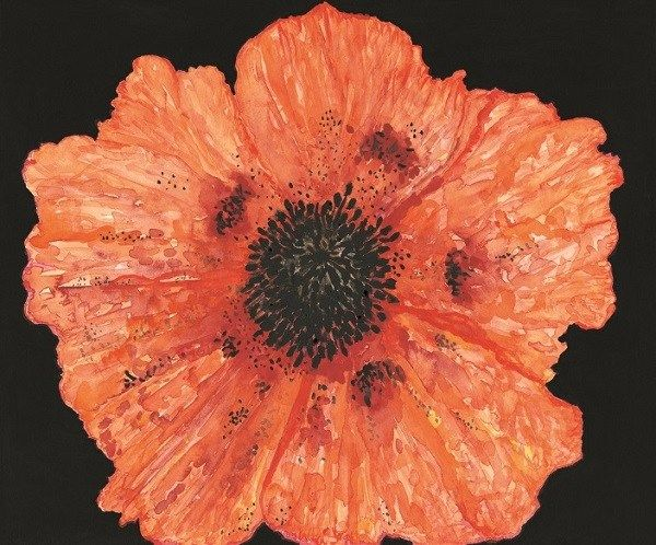 Charity cards launched on Valentines Day in aid of the Royal British Legion https://i0.wp.com/www.cumbriacrack.com/wp-content/uploads/2018/02/Poppy-showing-black-anthers.-COPYRIGHT-painting-ROBIN-OLIVER-ARTIST-All-rights-reserved..jpg?fit=600%2C498&ssl=1 Robin Oliver designed commemorative charity cards will be launched in Carlisle on Valentines Day! In remembrance of the upcoming centenary of 'the agreement to end fighting during the First World War'    https://www.cumbr