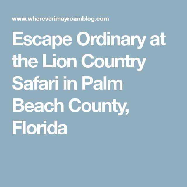 Escape Ordinary at the Lion Country Safari in Palm Beach County, Florida