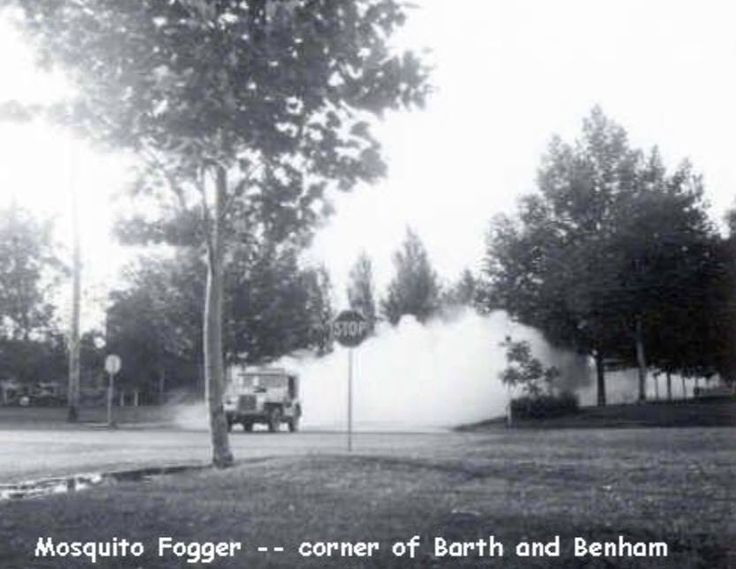 Mosquito Control Richland Wa 163 Best Images About