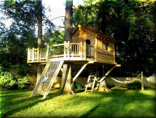 A West Chester Ny Tree House With A Cargo Net Slide