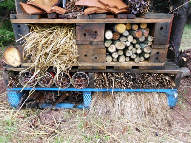 Permaculture - Red Sand Cottage - Bug Hotel