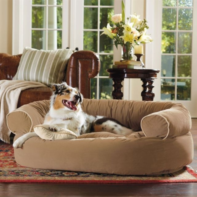 Comfy Couch Pet Bed Frontgate Dogs Pinterest