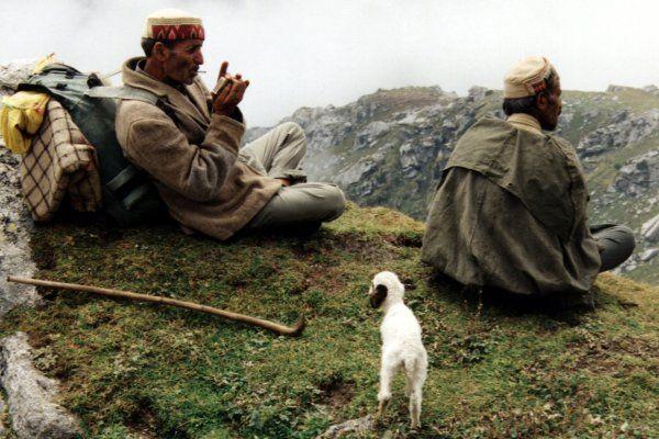 """Ewangelia Łukasza 2:8-15 """"Tej właśnie nocy, na pobliskich łąkach pasterze pilnowali owiec. Nagle stanął pośród nich anioł, a wokół zajaśniała chwała Pana. Bardzo się przestraszyli,lecz anioł rz..."""