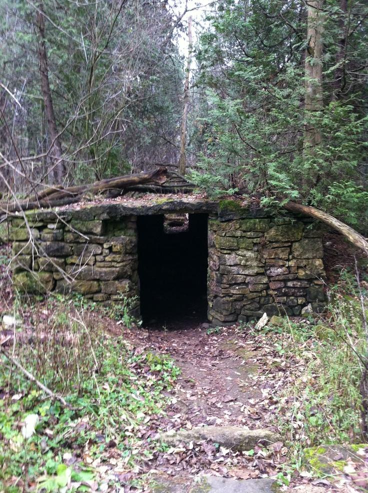 Root Cellar, Inglis Falls Conservation Area, Rockford, Ontario