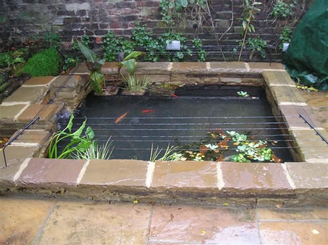 50 best koi ponds images on pinterest backyard ponds for Garden pond cleaning
