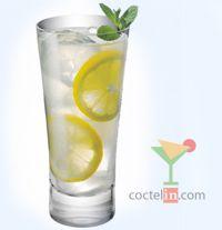 ¡Disfrutá de un buen Tom Collins preparado por vos mismo! En coctelin.com encontrarás las mejores recetas de Cócteles y Tragos con Ginebra. ¡Empezá hoy!