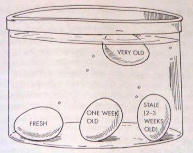 Place your eggs in a bowl of water to test how fresh they are. The more they float, the older they are.