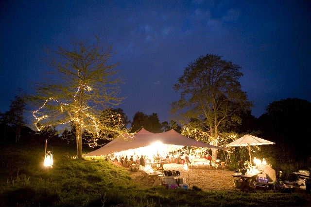 Gorgeous forest wedding in Plettenberg Bay