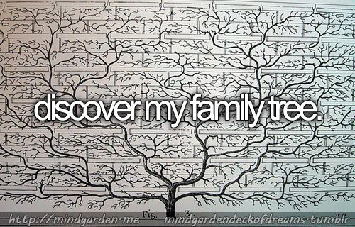 discover my family tree.