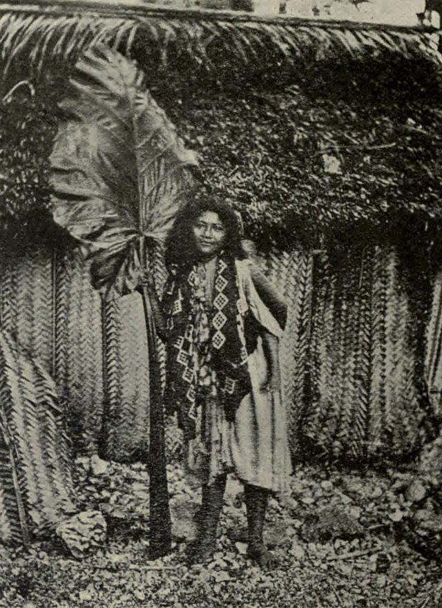 Polynesians - Niueans