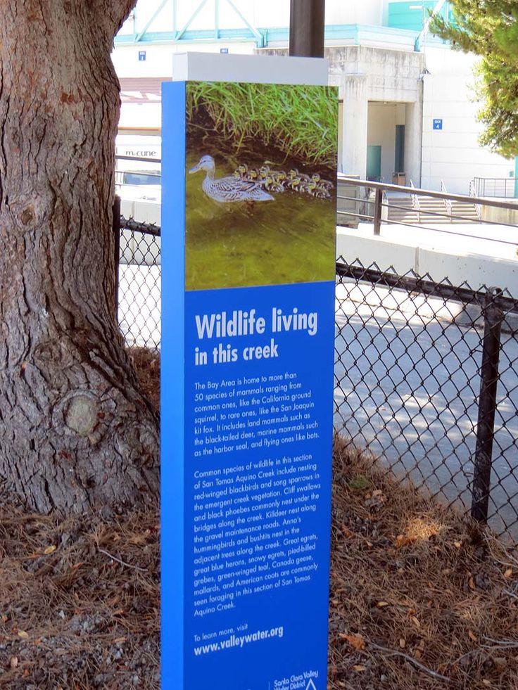 The San Tomas Aquino/Saratoga Creek Trail, Santa Clara, California
